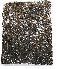 沖縄産乾燥枝もずく